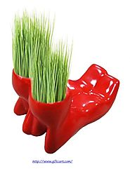 Cool planters from Giftcart.com !!! #giftcart