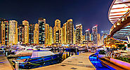 Enjoyment in the Glittering Night Tour of Abu Dhabi