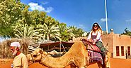 Discover the desert of Abu Dhabi with its exciting desert safari tours!!