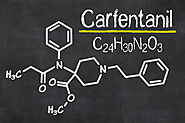 Raleigh Drug Lawyers Further Examine Dangers of Carfentanil as Opioid Deaths Explode