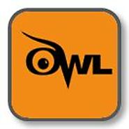 The Online Writing Lab (OWL) at Purdue University