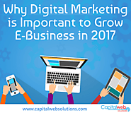 Digital Marketing is important to Grow E-Business in 2017