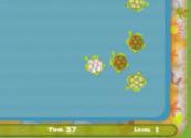Turtle Games for Kids Online - Play Free Games with All Kinds of Pets