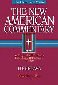 Question and Answer with David Allen on Hebrews (NAC)