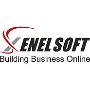 Xenelsoft - SEO company Noida India | SEO Services Delhi