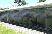 Barn misting systems for your animals