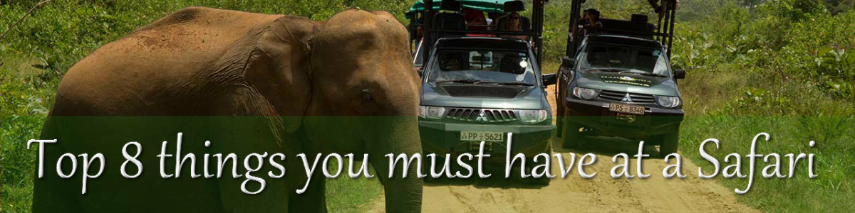 Headline for Top 8 things you simply must have at a Safari - And the hows and whys of it