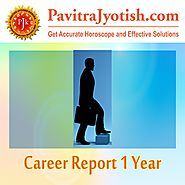 Career Report 1 Year
