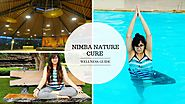 Journey of Wellness Bloggers at Nimba – Part VII