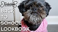 BACK TO SCHOOL LOOKBOOK (DOG EDITION) + GIVEAWAY