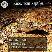Know Your Reptiles! | Bookings available on Entryeticket