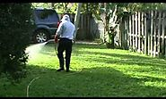Coral Springs Pest Control Services