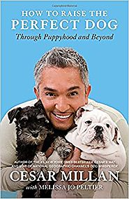 How to Raise the Perfect Dog: Through Puppyhood and Beyond Paperback – September 14, 2010