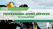 Professional Diving Services in Singapore
