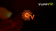 Sun TV Live | Watch Sun TV Tamil Live Streaming Online