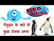 🐧Interesting Facts about Penguins | Habitat of Penguin | Animal Information for Kids | Ciko se Sikho