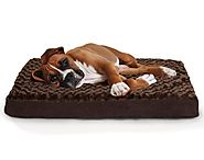 Best Dog Beds 2017 (August. 2017)