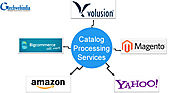 Outsourcing Catalog Management Services is Cost Savings