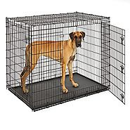MidWest Extra Large Dog Breed (Great Dane) Heavy Duty Metal Dog Crate w/ Leak-Proof Pan, Double Door Giant Dog Crate ...