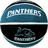 Panthers NRL Supporter Basketball - Western Sydney Suburb of Penrith