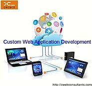 Prominent Custom Web Application Development Services