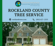 Rockland County Tree Service by Experts