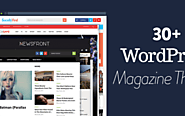 Professional WordPress Magazine Themes
