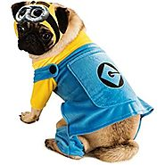 Despicable Me 2 Minion Dog Halloween Costume