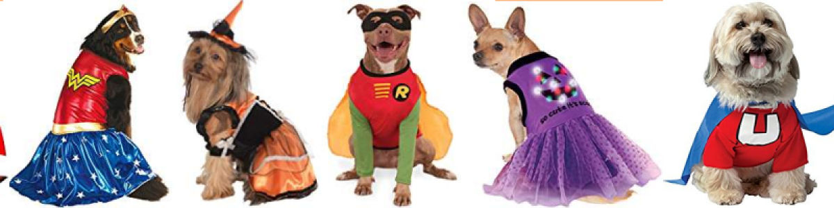 Headline for Dog Halloween Costume Ideas