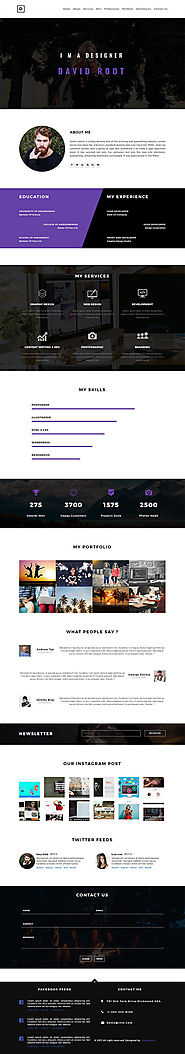 David Root - Web Designer Portfolio Website Template