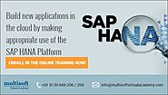 A Brief Introduction to the SAP HANA Online Training