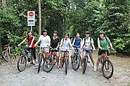 Cycling Tours - Nature Sightseeing