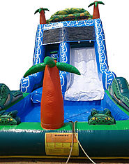 Bouncy Castle Slider Rental for Your Kid's Birthday Party!