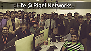 Rigel Networks Reviews, Celebrations & Work Culture
