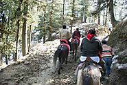 Best Shimla Tour Packages | Shimla Holiday Packages