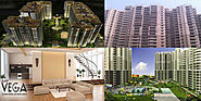 Apartments in Noida Extension-9911464396