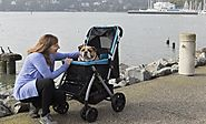 Walk-time needs you to pack you canine warmly in large strollers for dogs – Pet Rover
