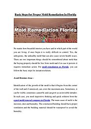 Basic Steps for Proper Mold Remediation In Florida