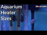 What's The Best Aquarium Heater? via @Flashissue