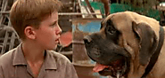 Hercules (The Beast) - The Sandlot