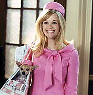 Bruiser - Legally Blonde