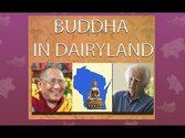 Buddha in Dairyland