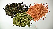 Lentil Market Outlook