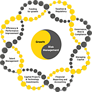 Role of CFO | Responsibilities of CFO - EY India