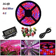 ABelle LED Strip Light Plant Grow Lights 16.4ft 5050 SMD Waterproof Full Spectrum Red Blue 4:1 Growing Lamp for Aquar...