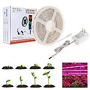 LED grow light, Nexlux Plant Grow Light Kit,16.4ft/5m 5050 Waterproof Full Spectrum Red Blue 4:1 Growing Lamp Aquariu...