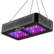 KINGBO Dual Optical Lens-Series 300W LED Grow Light Full Spectrum for Indoor Plants VEG and Bloom(Two Switch, 12-Bands)
