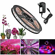 ALight House LED Plant Grow Strip Light 3.3feet Full Spectrum SMD 5050 Red Blue 4:1 Rope Light with Power Adapter for...