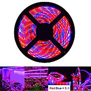 iNextStation LED Plant Grow Strip Light 16.4ft 5M Full Spectrum SMD 5050 Red Blue 5:1 Rope Light for Greenhouse Hydro...