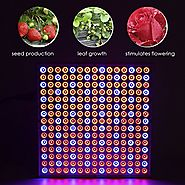 Top 10 Best Red and Blue LED Lights for Plant Growing Reviews 2017-2018 on Flipboard